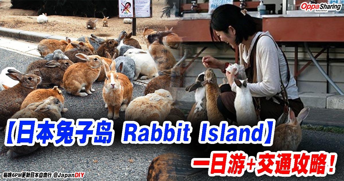 Photo of 【日本兔子岛 Rabbit Island】大久野岛Okuno-Shima Island一日游+交通攻略!享受被一群兔子围住~~