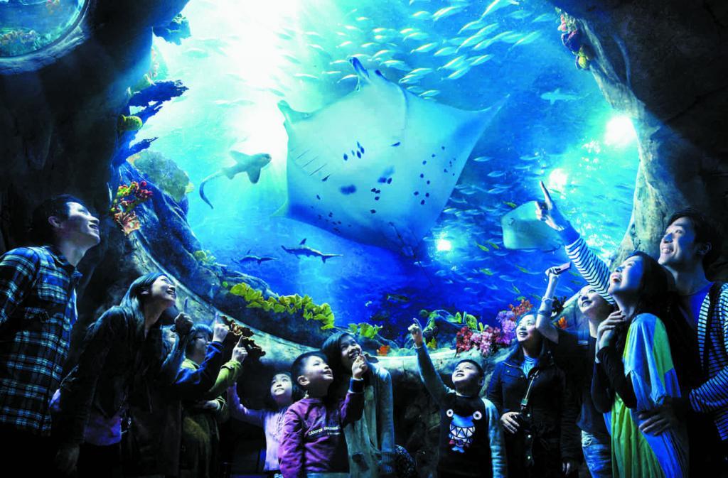 【陆海空全包的奇妙体验】香港海洋公园Ocean Park 电子兑换门票