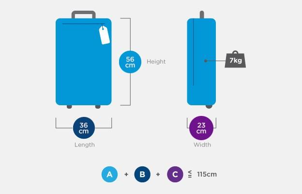 baggage-cabin-mas