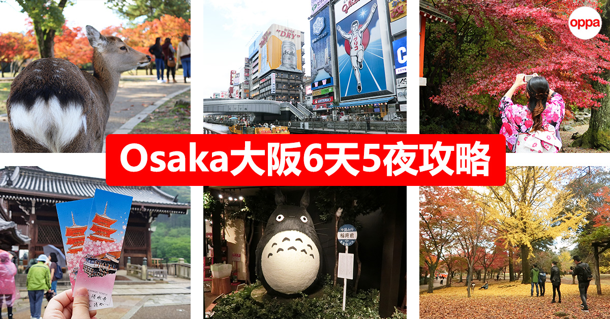 Photo of 【大阪Osaka自由行】6天5夜就酱玩!环球影城+京都+奈良一日游!