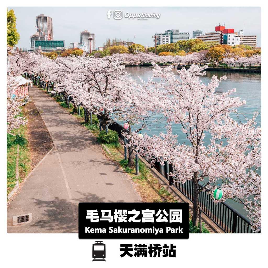 毛马樱之宫公园 Kema Sakurnomiya Park