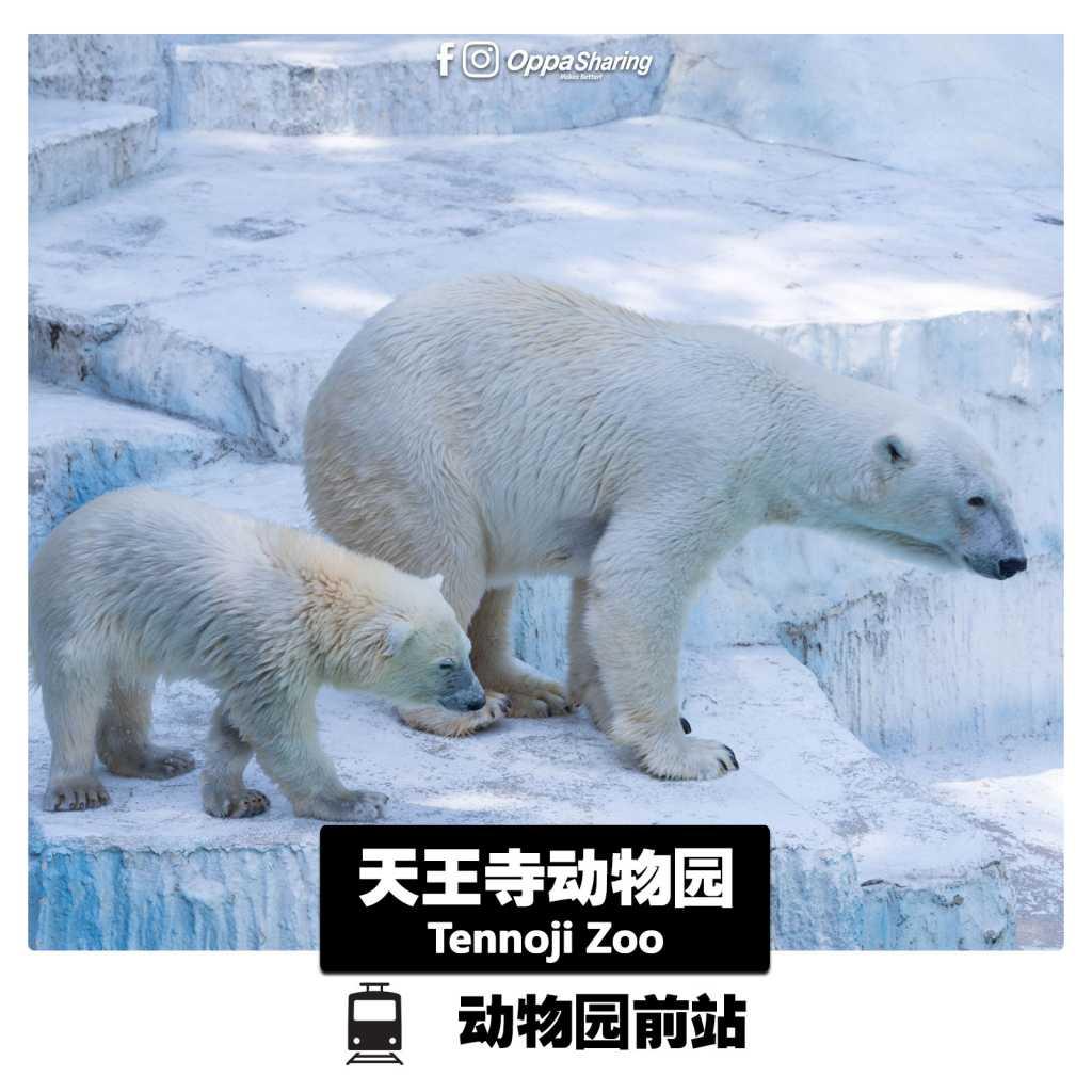大阪天王寺动物园 Tennoji Zoo