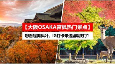 Photo of 【大阪OSAKA赏枫热门景点】想看超美枫叶,IG打卡来这里就对了!