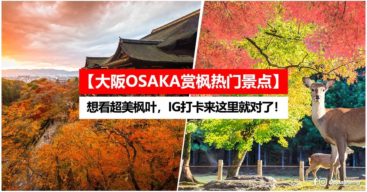 【大阪OSAKA赏枫热门景点】想看超美枫叶,IG打卡来这里就对了!