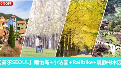 Photo of 【韩剧热门景点】南怡岛+小法国+江村铁道Railbike+晨静树木园一日游~ [20%折扣]