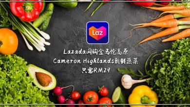 Photo of 【生活资讯】Lazada网购金马伦Cameron新鲜蔬菜只需RM29!
