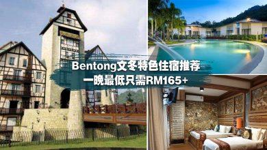 Photo of 【国内旅游】Bentong 文冬特色住宿推荐·一晚最低只需RM165·让你住进大自然里