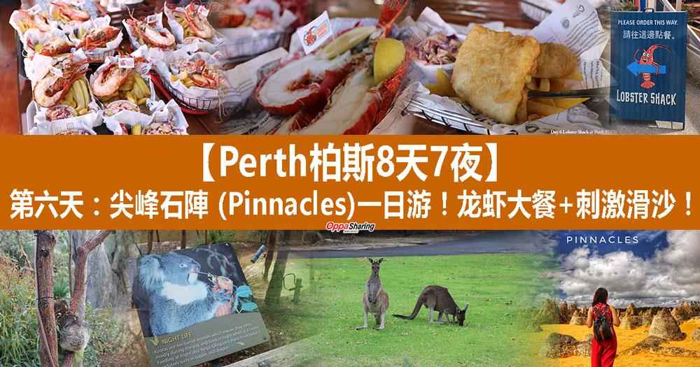 Photo of 【Perth柏斯8天7夜】第六天:尖峰石陣 (Pinnacles)一日游!龙虾大餐+刺激滑沙!!