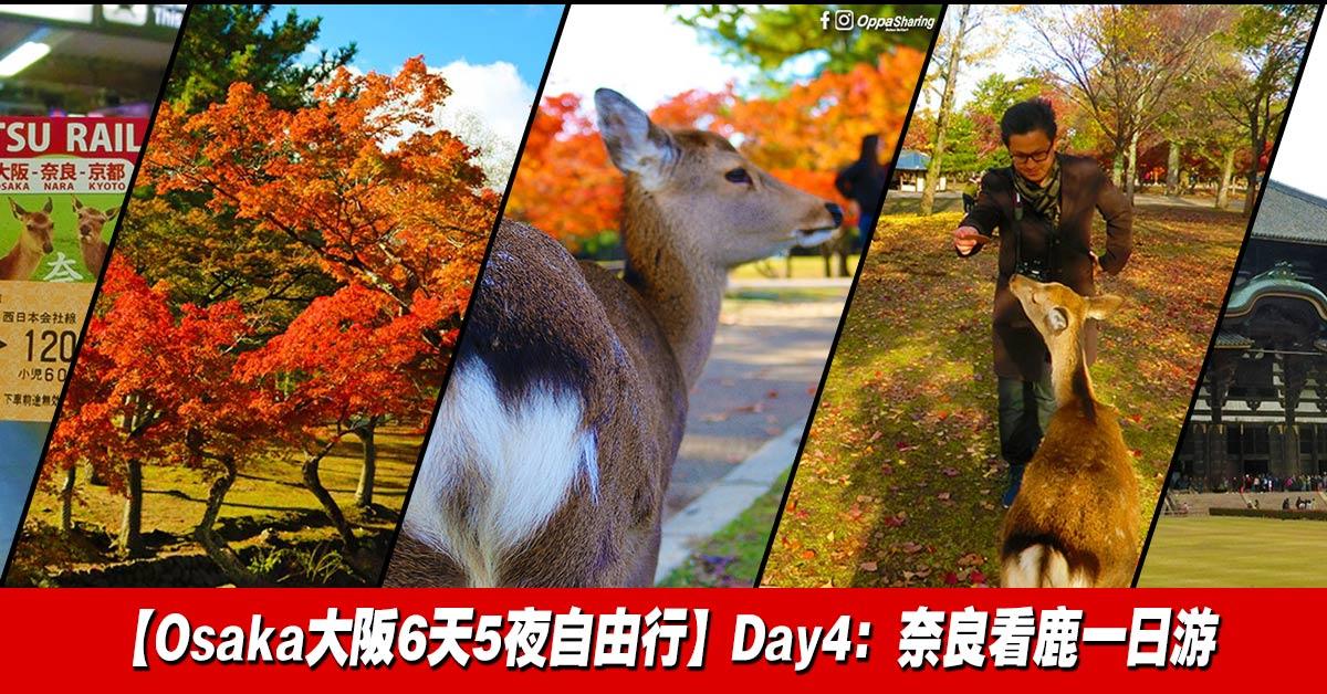 Photo of 【Osaka大阪6天5夜自由行】奈良看鹿一日游