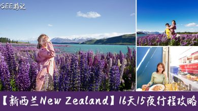 Photo of 【16天15夜新西兰New Zealand】 行程+住宿+交通+旅游贴士攻略!#更新完毕